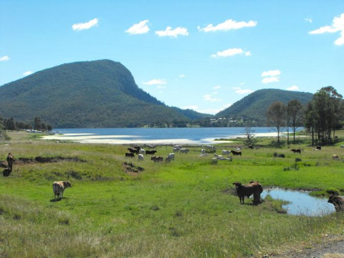 Bordering the national park are cattle properties. This was a scene from near our camping grounds.