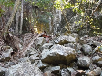 Boulders in Gorge