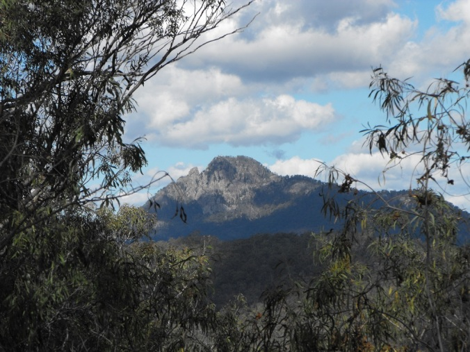 Mt Goolman in the distance
