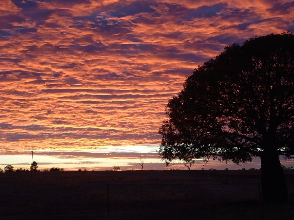 Outback sunrise