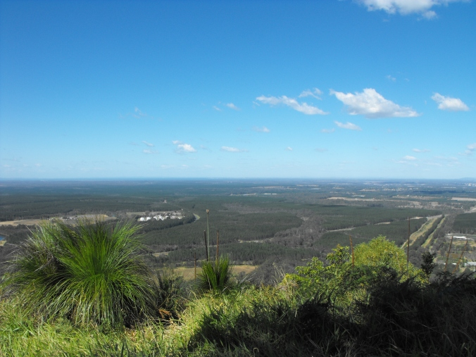 Beerburrum view