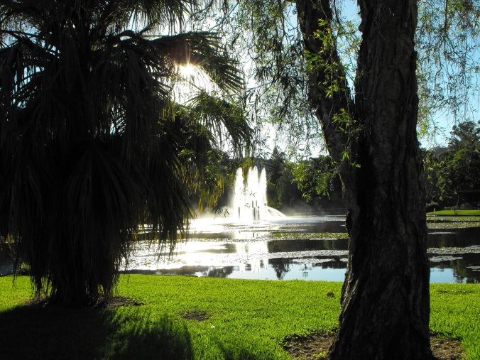University lakes and fountain