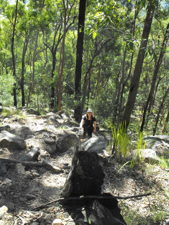 Jane on steep track at Mt Maroon