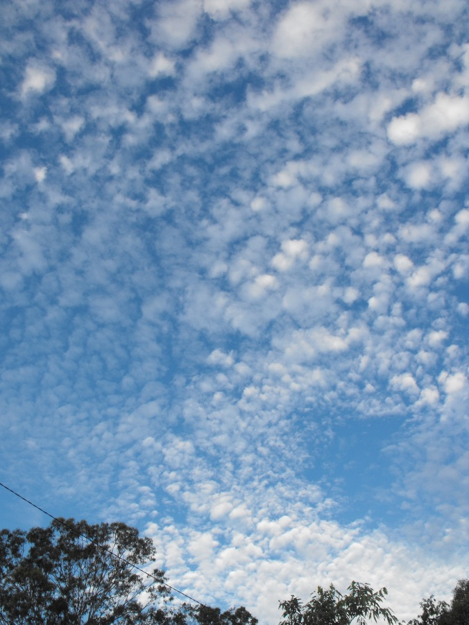 Clouds at Castle Hill 1
