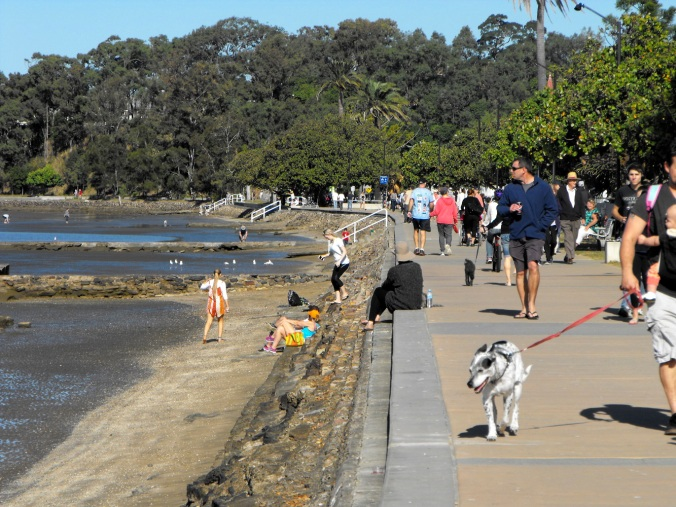 Sandgate foreshore paths