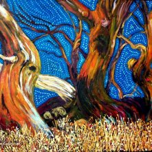 Dance of The Snow Gums