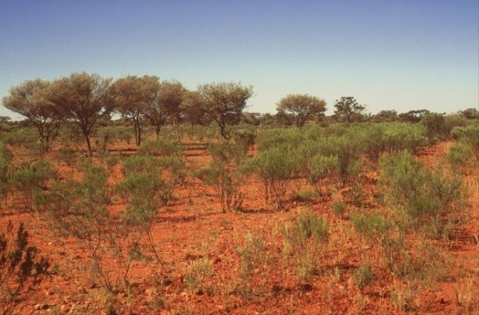 red soil country