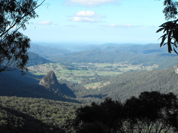 Bellbird Lookout