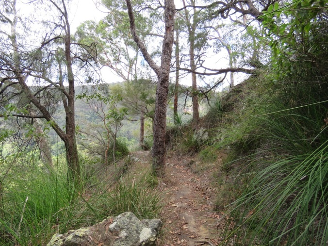 Cliff path to lookout