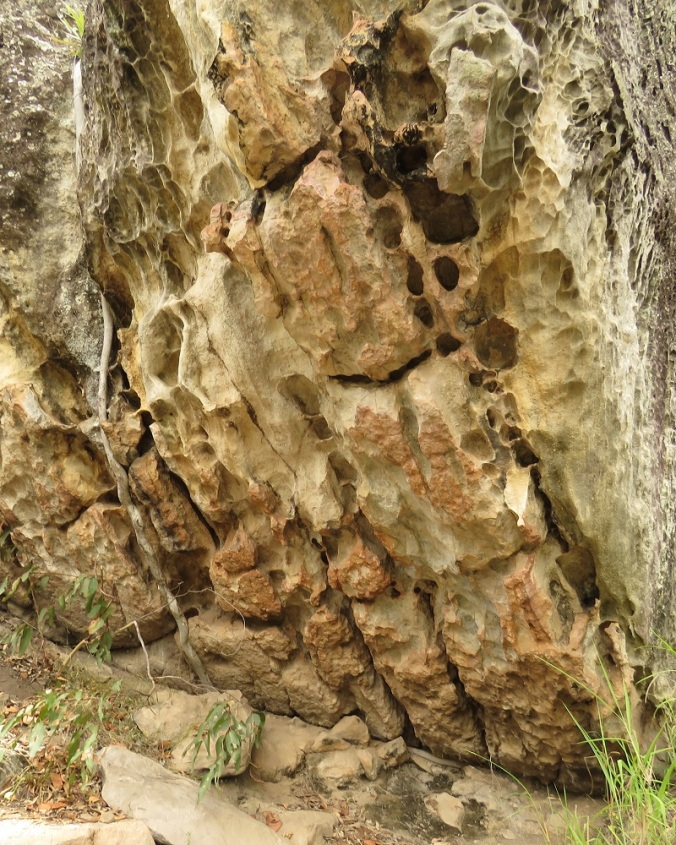 Two Storey Cave Track Honeycomb Rock - Cania Gorge