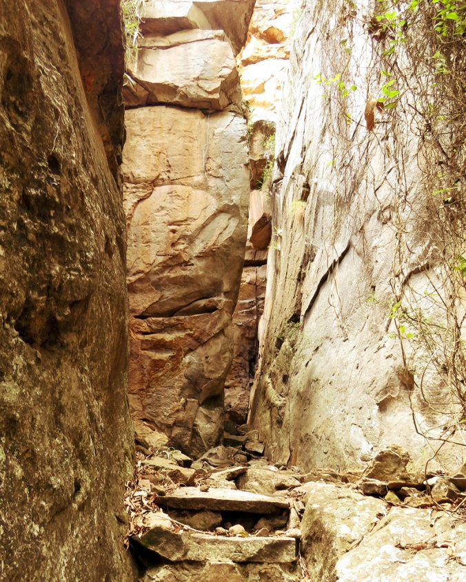 Two Storey Cave Track - King Orchid Cleft - Cania Gorge 2 1