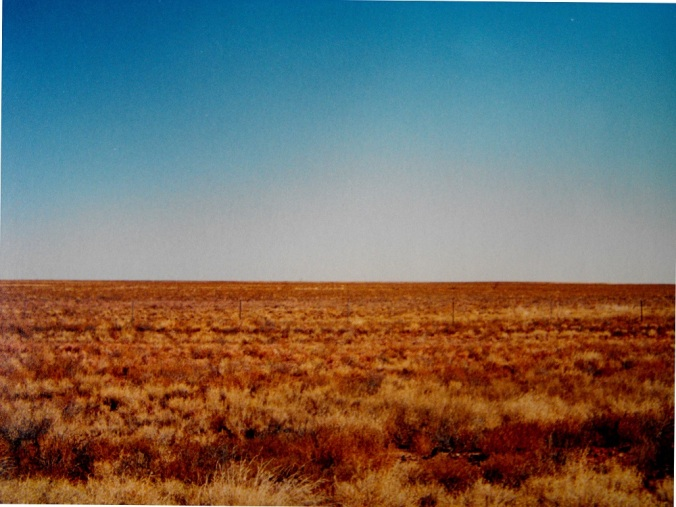 savannah grassland - NW Queensland