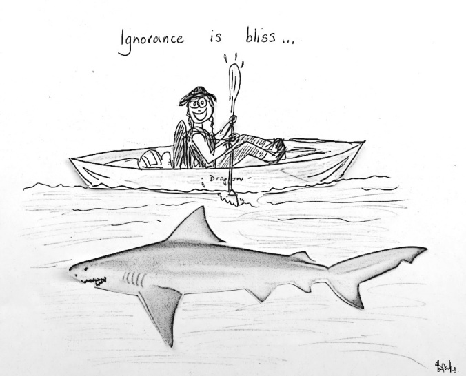 Ignorance is bliss - kayaking