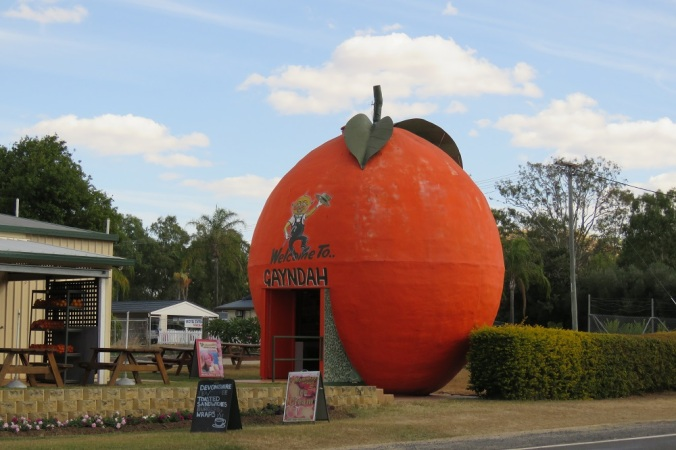 Gayndah orange