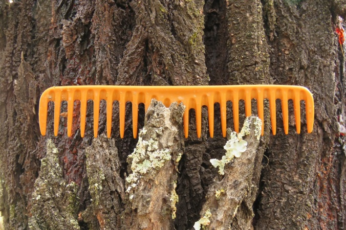 Comb on a tree