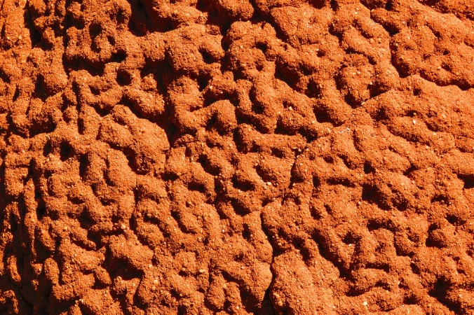 red termite mound