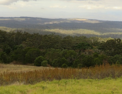 gus-beutel-lookout-ravesbourne-national-park-20