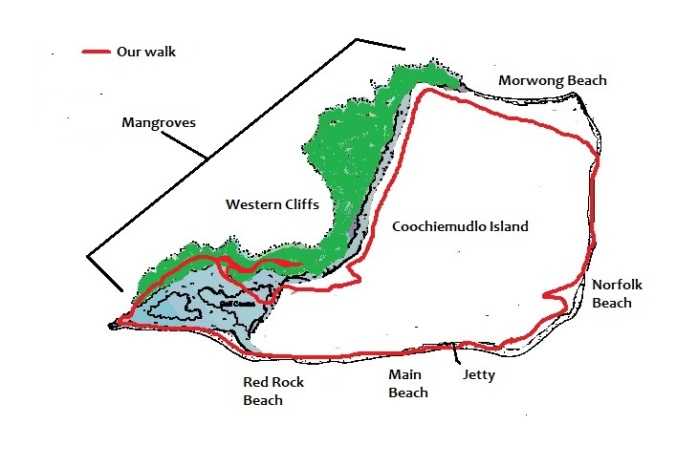 Coochiemudlo Island map mangroves