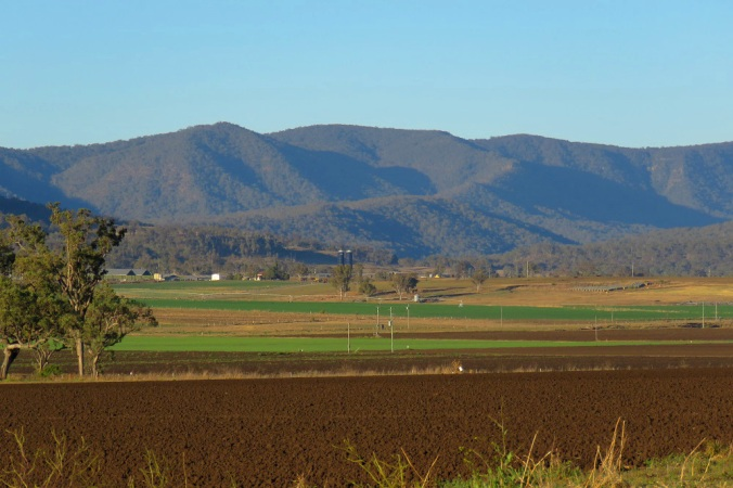 Farmland Goomburra