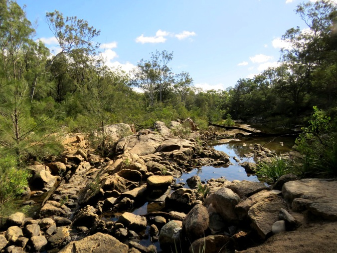 Crows Nest creek