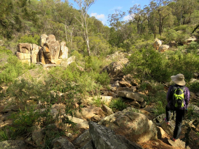Crows Nest Creek and girl